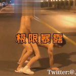 【ツイッターゲイ動画】車道で生まれたままの姿のまま立ちバックやバックで露出セックスをする淫乱チャイニーズ!